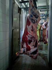 Мясо бличное,Туша говядины охлажденная,мясо на фарш,сбоя.