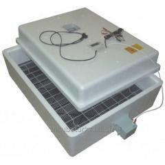 Incubator Layer of Bi2