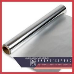 Foil Molybdenum