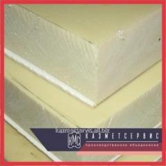 Kaprolon block of 100 mm (~ 700x500 mm, ~ 42 kg)