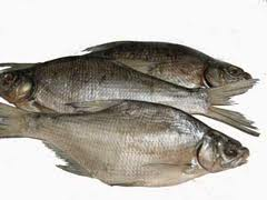 Bream (dried)