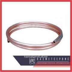 Импульсная трубка 200-ст.20-МП наруж G1/2- наруж G1/2 резьбовая прямая