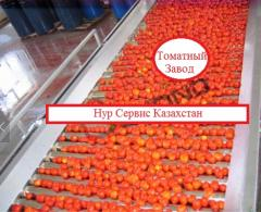 All production line for production of tomato paste