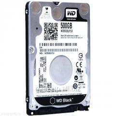 Жесткий диск для ноутбука WD 500Gb Black 32Mb 2,5