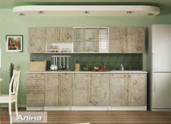Кухонный гарнитур Алина 2.6.