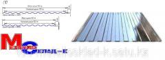 Professional flooring of galvanized C 10, 0.45 mm