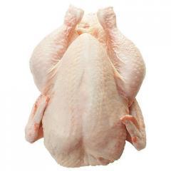 Mięso kurczaka