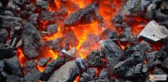 Brand D coal Shubarkol Komir
