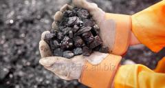 Coal on cars