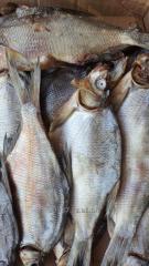 Smoked fish in big assortmen