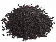 Семена калинджи