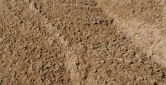 Sandground