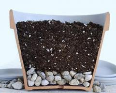 Soil for houseplants