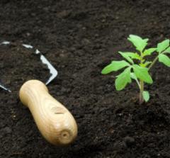 Soil for planting