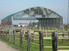 Buildings and facilities for cattle breeding