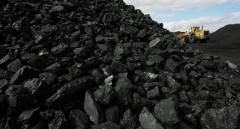 B3 brand coal