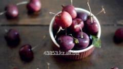 Спелая вишня (Black Cherry)