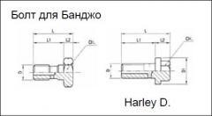 Болт для Банджо RK-BFDH-0
