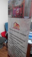 Х баннер паук растяжка в Алматы, арт. 8275130
