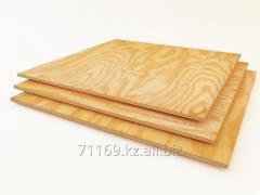 Plywood coniferous