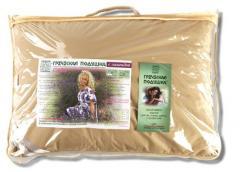 Греческая подушка с листьями эвкалиптом 40х60 в футляре (ортопедическая)