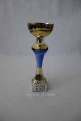 Cups prize in Almaty