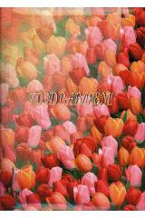 Папка адресная А4 Поздравляем Тюльпаны глянцевая