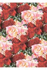 Папка адресная А4 Дорожка Из Роз