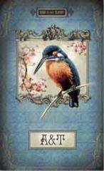 Книжка алфавитная А6 48л. Птичка ( Феникс+ )