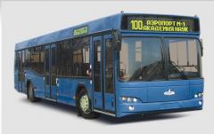 MAZ 103 bus