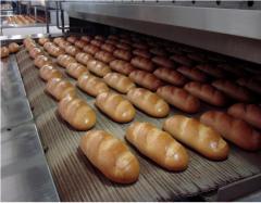 Оборудование хлебопекарное