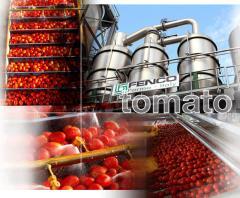 Линии по переработке овощей