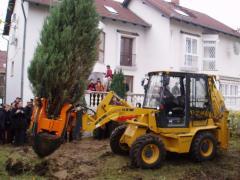 Машина для пересадки деревьев Optimal 880