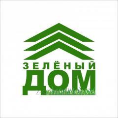 Fir-tree Tyanshansky Astana Almaty Aktobe Atyrau