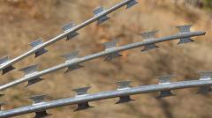 Fidget, barbed wire