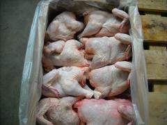 Meat of broilers