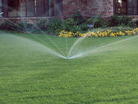 Systems of watering of lawns, bushes and trees