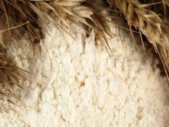 Пшеничная мука всех сортов из Казахстана, Костанай, ОПТ, ЭКСПОРТ