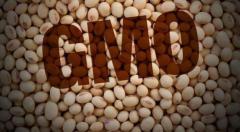Семена Сои Канадский трансгенный сорт сои WHITBY