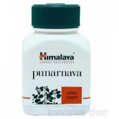 Пунарнава, Punarnava, Himalaya 60 капсул, тонизирующее и омолаживающее растение для почек