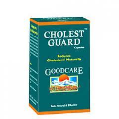 Холест Гард, холестерин под контролем ( holest Guard GoodcareC),способствующая выводу избыточного холестерина