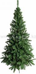 Комнатная елка Алтайская для дома, ресторанов и т.д. Высота от 0,9 до 2,1 м