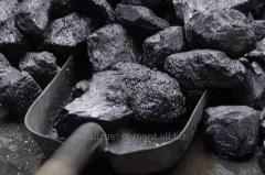 Уголь Сарыадырский