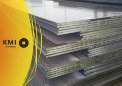 الصلب والفولاذ المقاوم للصدأ لوحة الحرارة
