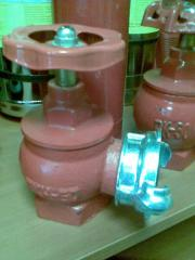 Fireplug complete with a nut of hypermarke
