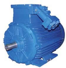 Explosion-proof motors