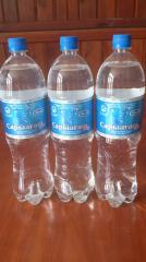 Минеральная вода Сарыагаш Адина без газа, Казахстан