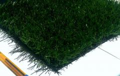 Sport lawn