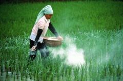 Оптовая торговля пестицидами