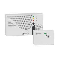 Сигнализатор RGDCO0MP1 (CO)